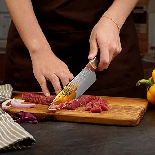 PAUDIN Chef Knife - Pro Knife High Carbon Stainless Steel Sharp with Handle, Best Fruit and